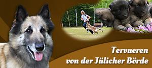 Homepage von der Jülicher Börde