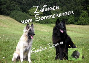 Homepage vom Sommeranger