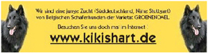 Homepage von Kikishart