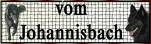 Homepage vom Johannisbach