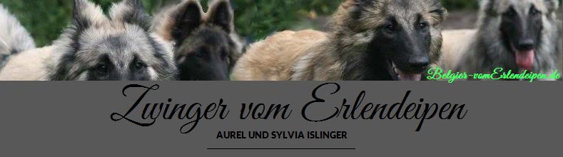 Homepage vom Erlendeipen