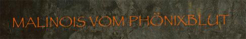 Homepage vom Phönixblut